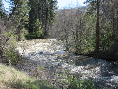 I headed for a hike up the Kern River, ...
