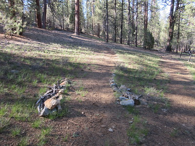 As I rounded Trout Meadow and headed to Kern Flat, it was nice to see my trailwork from about three years ago still useful and then ...