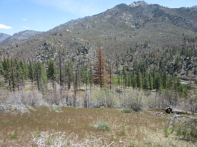 ... get a closer look at Kern Flat.