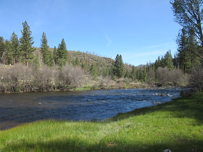 Kern River by my camp ...