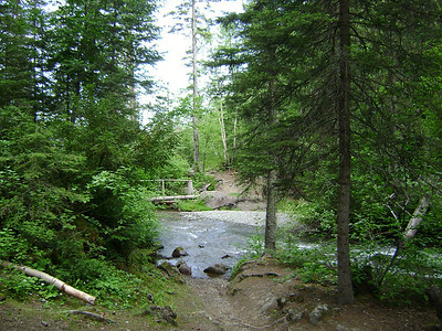 The trail crosses the creek here, just above the Holland Lake Falls