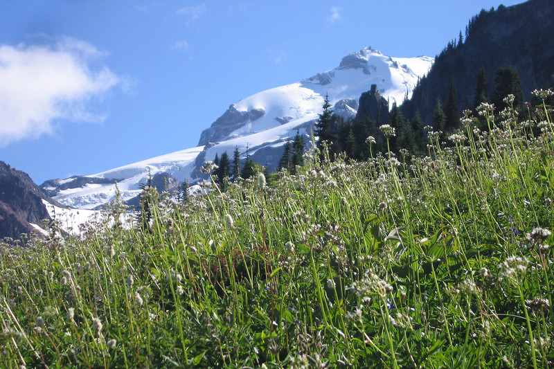 Day 7: Glacier peak.