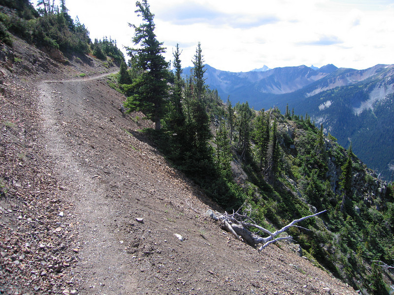 Day 3: Typical trail along the mountainside. Passed Harts Pass, a popular day hiking trail head.
