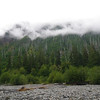 From the Hoh River bed, looking back up, we could not see the mtn top