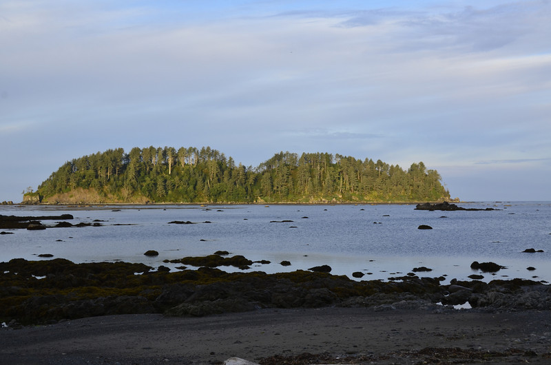 Ozette Island in the morning sun.