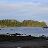 Ozette Island in the morning sun.