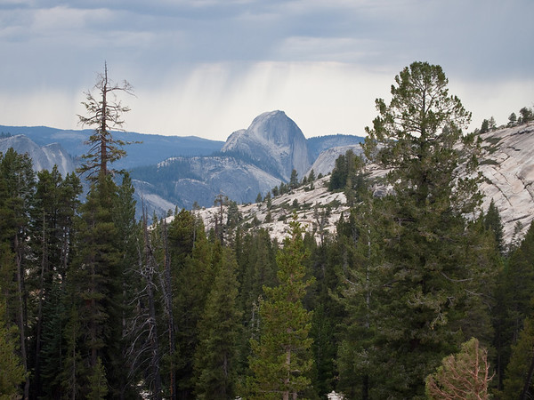 View of Half Dome from Olmstead Pt along Hey120.