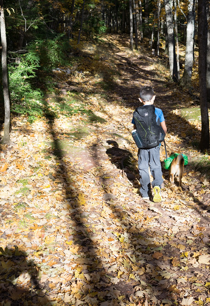 First backpacking trip with Neiko. He was carrying his dog food, a small trowel for burying his poop, his 25' cord, a small water/food bowl and some Musher's Secret that we put on his feet each morning. About 2.5 to 3 pounds.
