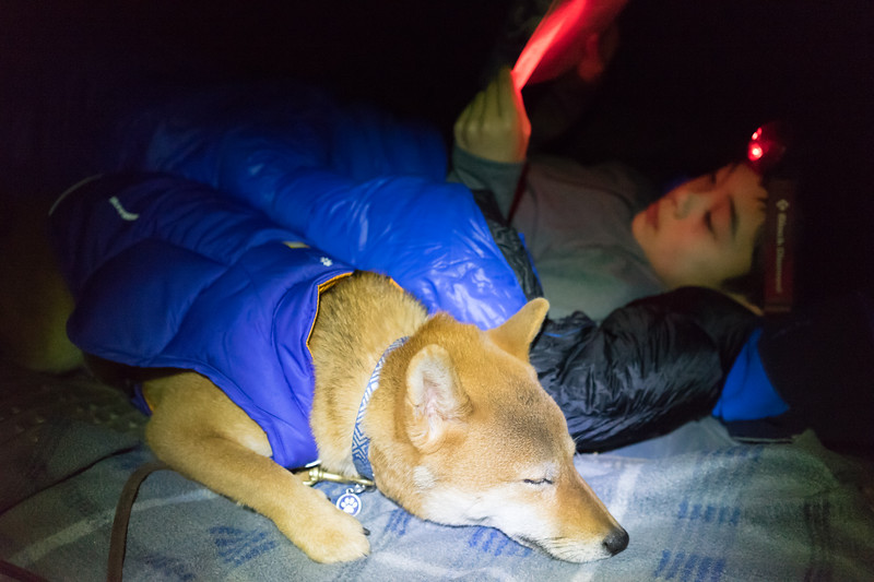 Neiko's first time sleeping in a tent. With his new insulated jacket to keep him warm. He went right to sleep.