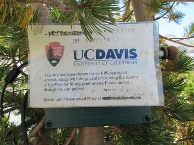 "... someone from UC Davis is recording ""sounds of the Park for future generations.""  Maybe it is from a devious/creative grad student who is required to conduct some scientific study, but who really wants to go backpacking and hiking this summer?"