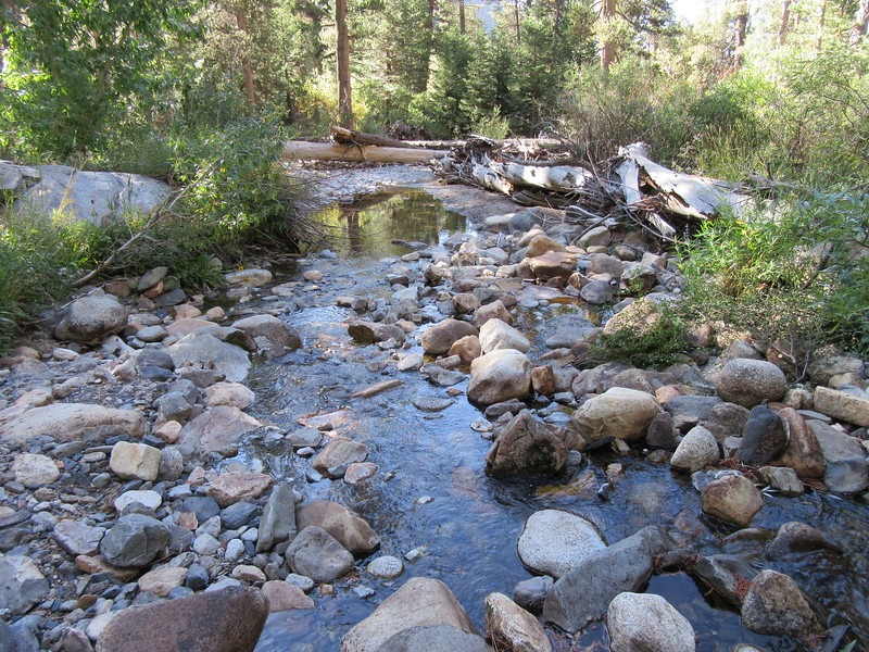 ... I dropped down to my low point in the canyon (8300') and then soon crossed the Little Kern River, here, on my way up to its ultimate headwaters.