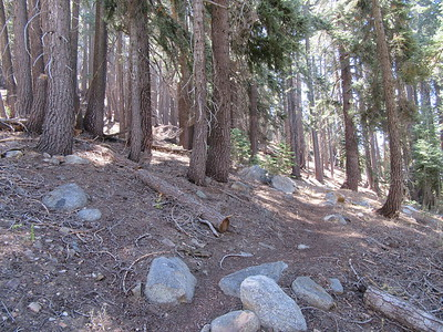 After the initial steep climb out of Mineral King, the trail generally traverses the eastern side of Tar Gap like this.