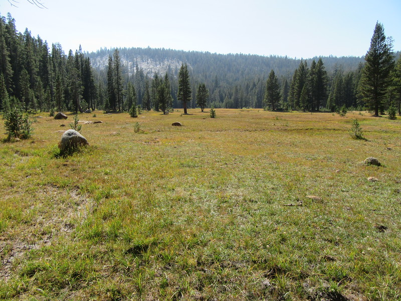 ... Wet Meadow (9,100') where ...