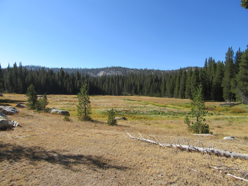 ... passing by South Fork Meadows along the South Fork Kaweah River.