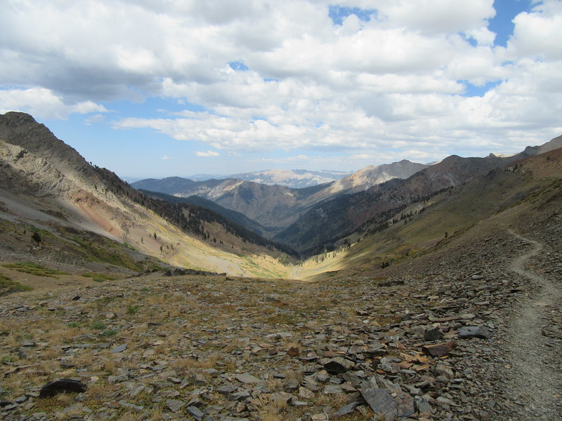 ... this view in the other direction, north down Farewell Canyon and toward Mineral King where I headed.