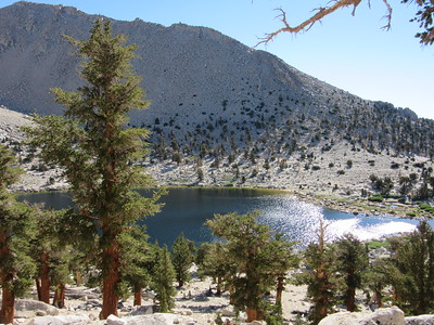 I as hiked north on the PCT the next morning I had this view back down on Chicken Spring Lake.