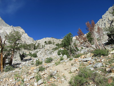 ... leaving the shade for an even stepper climb up through a lot of granite.