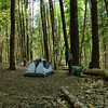 Pretty Hollow Camp