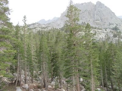 ... in a wooded valley containing Willow Lake (9,711') and ringed by ...