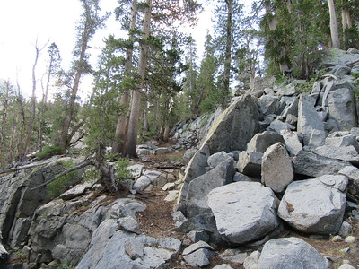 ... a trail that rose gently through trees and boulders.