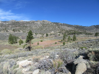 As I continued north on the PCT the next morning, I got this look back over more of Clover Meadow, and a little later ...