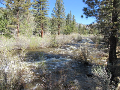 ... headed north on the Pacific Crest Trail as it ran upstream beside the South Fork Kern River.
