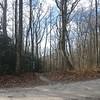 The Appalachian Trail (AT) at Mooney Gap, heading north.