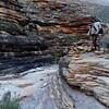 Grand Canyon East Tonto BP-   Day 5 - Hiking to Cedar Spring - Salt Creek