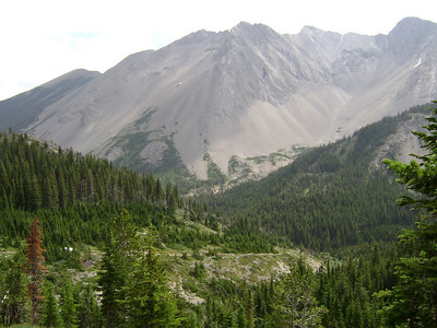Mt Field (elevation 8590), along the Badger Pass Trail, can you see the trail?