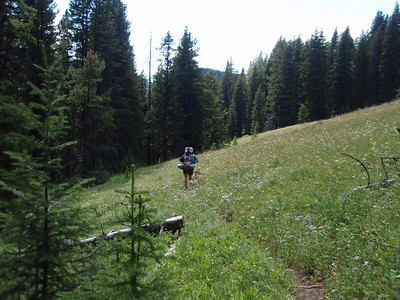 Unable to find a good camping spot at Wapiti Park or the junction with trail #476 we decided to head for Schafer Meadows... this day ended up being a LONG day!