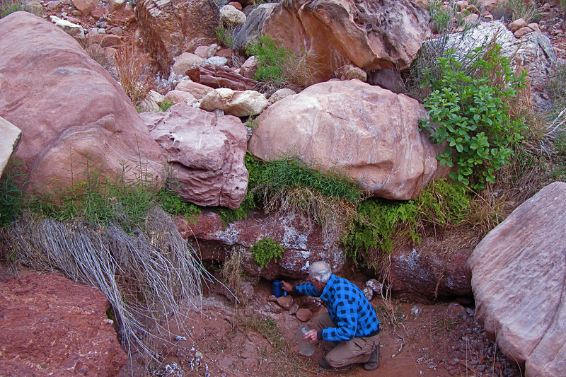 We found a small drip in the stream bed. About 1 drop every 10 seconds. By leaving a bottle here overnight, we collected a liter of water.<br /> Photo by John Otter