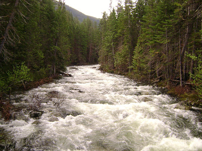 This river was just ROARING!!  we camped right next to it in a great spot, but was to dark and wet for pictures!
