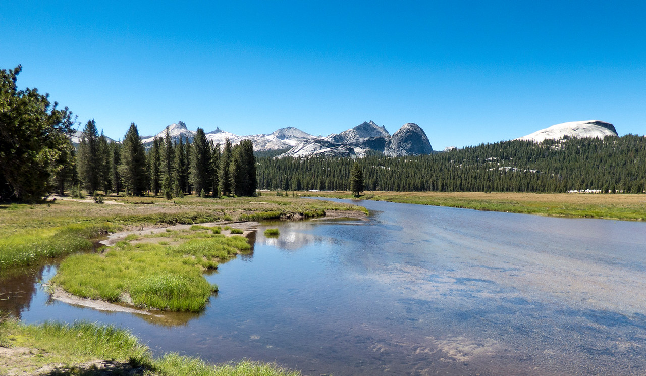Tuolumne Meadow Scene