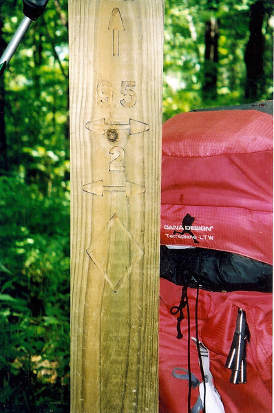 The North Fork trail climbs to Cherry Log Gap and I find a brand new trailpost put in by the Crosscut Mountain Boys led by Ken Jones and Rick Harris.  Fodderstack Ridge is #95 and the BMT is #2.  Out of view is #98 the North Fork trail.<br /> <br /> JOURNAL TRIP 48<br /> <br /> DAY TWO<br /> <br />   MORNING ALONG THE NORTH FORK CITICO TRAIL: A rainfree night has been spent in the nylon shelter but now I am up and preparing for my day hiking up this trail to Cherry Log Gap and the high Unicoi Ridge. As soon as I put on the heavy pack I will reach the last 2 major crossings whereupon the trail steepens and takes me past several significant trailside markers such as the Blue Rocks, Old Goat Falls, the Rock Ledge with the footsteps carved in it, the Cold Spring trail intersection and the upper trail walk thru the creek.<br /> <br />     ON THE NORTH FORK TRAIL: Ok, I left Camp Seven and crossed #8 and #9 and went up the steep horse cut and past the Blue Rocks to arrive at Old Goat Falls for a long sweaty rest atop the big rock by the plunge. This is a pretty place and one that beckons to stay long and to explore, to sit by the water and wait, to think about the next hard climb and weep, to gladly reach the bowl section and rest again.<br /> <br />     Ok, here I sit resting at Camp 21 by the big rock stairway. After battling the low rhodo up this particular kind of Lost Valley, I am spent and yet anxious to keep backpacking upward to the ridge and into the shadows of Snow Camp.<br /> <br />     Here I sit at the high camp of the North Fork very hot and glad to be in the open bowl and out of the cursed rhodo. I will cool down and rest and then climb to the ridge in one final push where I'll set up camp and do a water run down the BMT. The open bowl is very steep but it isn't too long and I'll be happy to do it and get up to the 4,600 - 4,800 foot mark where it is cooler and breezy. I reached Cherry Log and found the new BMT trailpost showing trail #98 down the North For