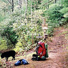 I leave the boys at Crowder Camp and go north on Fodderstack Ridge to Farr Gap where I dump the pack for a rest.