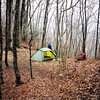It's a short hump to Brown Fork Gap where I find a place to set up the tent near water and fairly far from the Brown Fork shelter.
