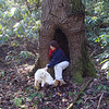 She and the dog look good in this hollow tree on the Stiffknee trail.