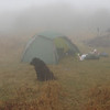 I make it to Bob Bald in a thick fog and set up the Hilleberg Staika for another night in the woods.