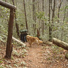 Not far up the Rocky Flats trail I run into Hootyhoo and his Kelty pack and his dog rooty.