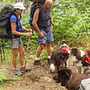 Are these photos or just noise? Sorry for the dang pixel frenzy. Anyway, this shot shows David with his old vintage Jansport pack. And a couple of his family of border collies. God bless the Citico--they allow the almighty dog.