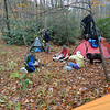 Little Cove Camp is a great place to go to get out of a windstorm.