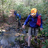 We cross over Sugar Mt and fall down to the headwaters of the Upper Bald Creek.
