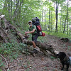 I leave Mitten and Beech Gap and make my way on the BMT/Fodderstack trail to Cold Gap.