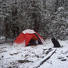 I set up the Staika tent on the South Fork Citico Creek for my first night and by morning get hit with the first snowstorm of the trip. Nothing much but it gets deeper thru the day.