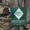 """The old BMT in Beech Gap is """"closed"""" but people hike it all the time."""