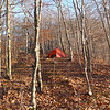 After the boys leave Naked Ground I survey my tent in Landon Camp.