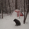 I set up in the wilderness and my first snowstorm of the trip begins. There will be two more before the trip is over. My tent of choice is a Hilleberg Staika.
