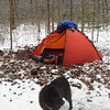Here's a great campsite on Hemlock Creek after the 4th crossing.