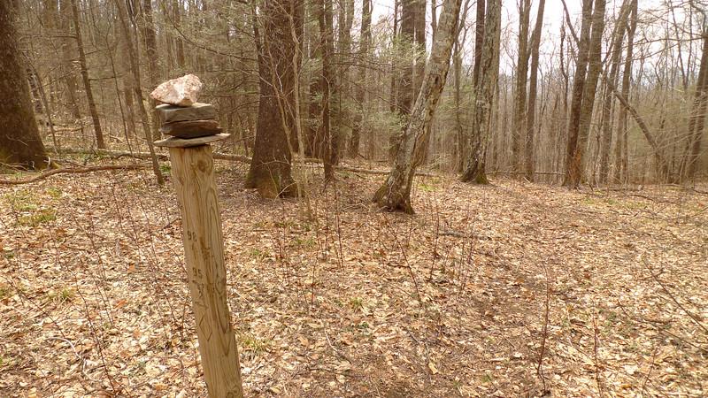 I return to Cherry Log Gap after doing some North Fork trailwork.