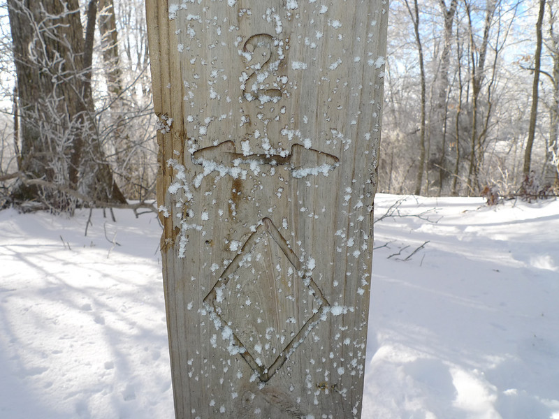 "Here's a Citico trailpost showing ""2"" which is the Benton MacKaye trail going thru Cold Gap."